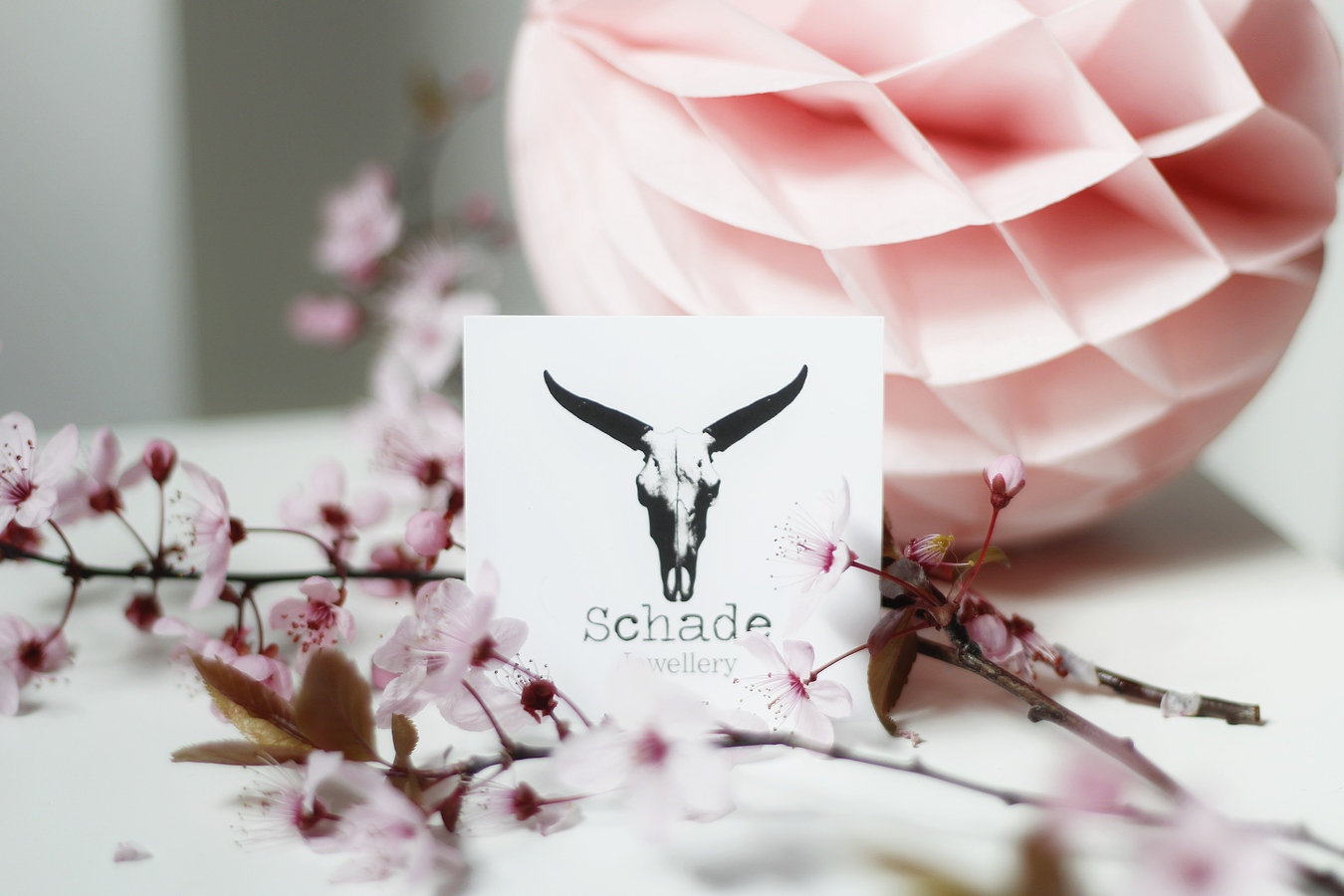 emma et chloé février - box bijoux - promo - bijoux - schade jewellery - avis - bague