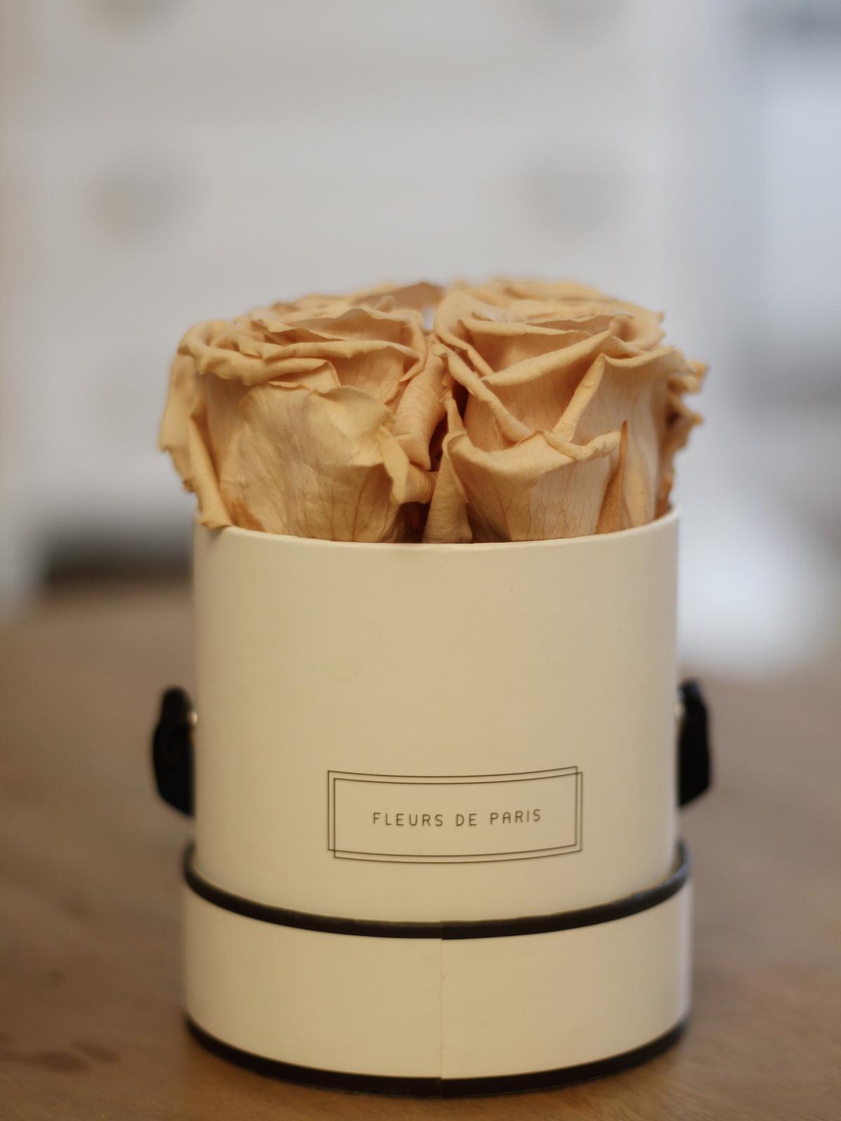 roses stabilisées; fleurs de paris